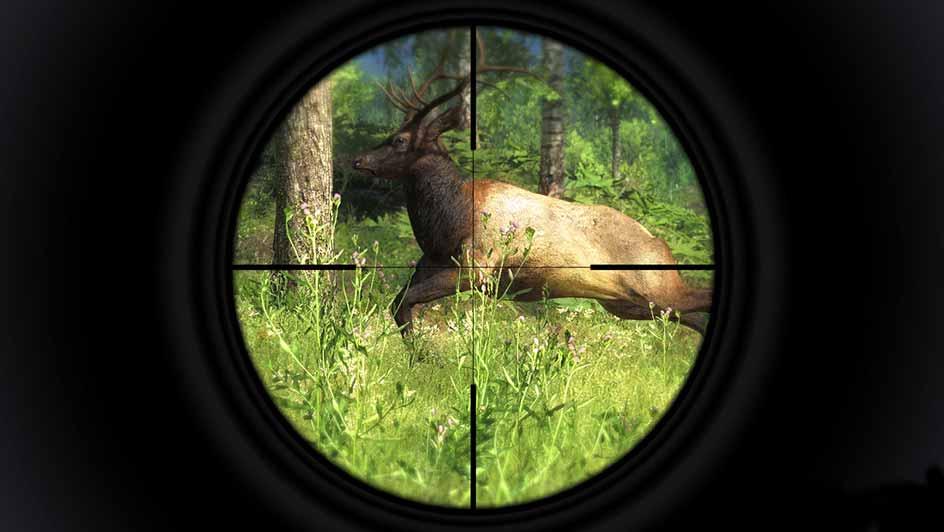 Jagdspiel Pc