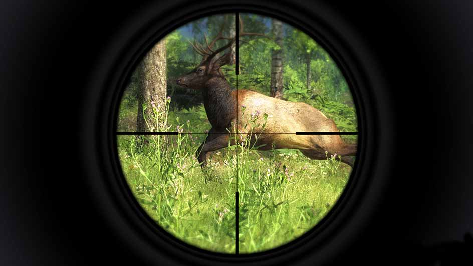 Hunting Game for PC | theHunter Classic